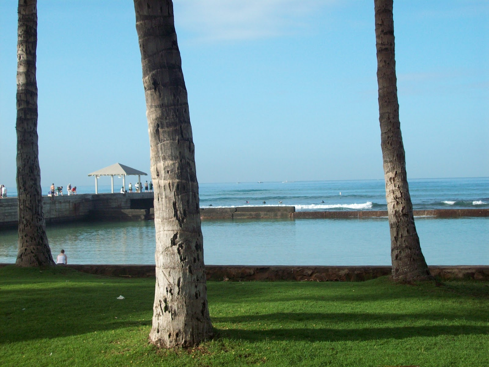 Hawaii Day 2 - 114_0900.JPG