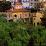 Villa Purificación's profile photo