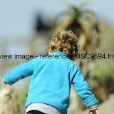 _DSC9594.thumb.jpg
