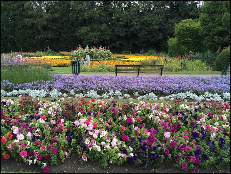 Dartford in Bloom