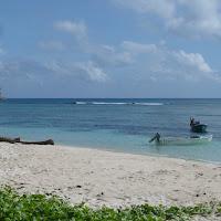 2010-05-01 - vacances aux Seychelles - Praslin