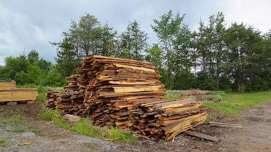 Photo: De belles croûtes de bois !