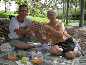 Mom and dad at our Christmas picnic