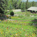 Cascades of Time Gardens (Banff)