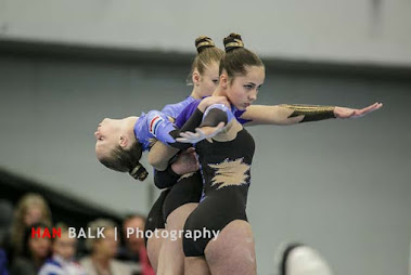 Han Balk Fantastic Gymnastics 2015-2203.jpg