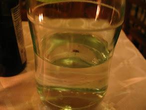 Photo: ... wo ich der Fliege in der Wasserflasche beim Baden zusehe ...
