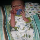 Meet Marshall! - IMG_20120528_165841.jpg