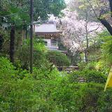 2014 Japan - Dag 7 - marlies-DSCN5651.JPG