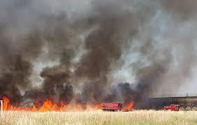 Oum El Bouaghi : 17 incendies de forêt depuis juin