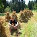 Dzień Piąty - odpoczynek po robocie w polu