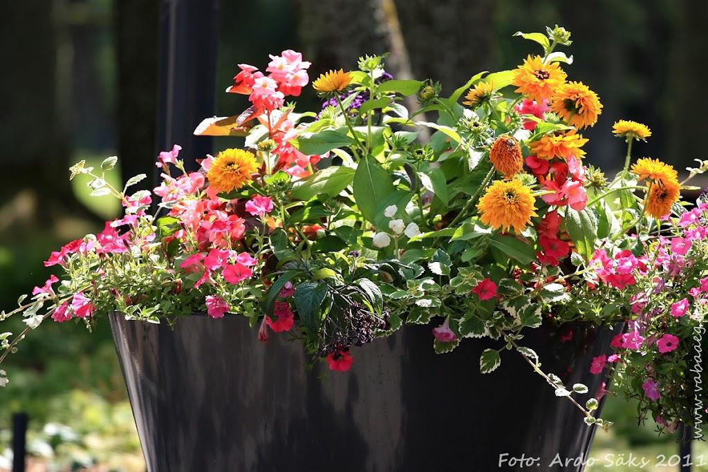 15.07.11 Eesti Ettevõtete Suvemängud 2011 / reede - AS15JUL11FS053S.jpg