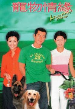 Chú Chó Thông Minh (SCTV9)