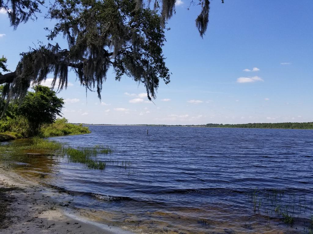 [Lake+Manatee+Swimming+Area-1%5B4%5D]