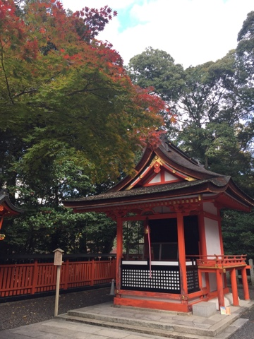 Beautiful Autumn leaves at Fushimi Inari Shrine in Kyoto