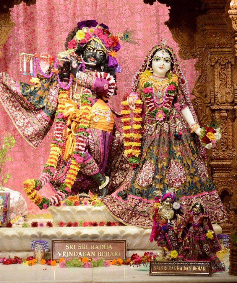 ISKCON GEV (Wada) Deity Darshan 23 Jan 2016 (10)