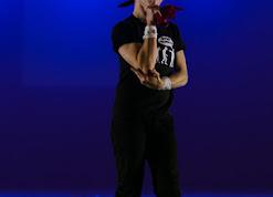 Han Balk Voorster Dansdag 2016-4966-2.jpg