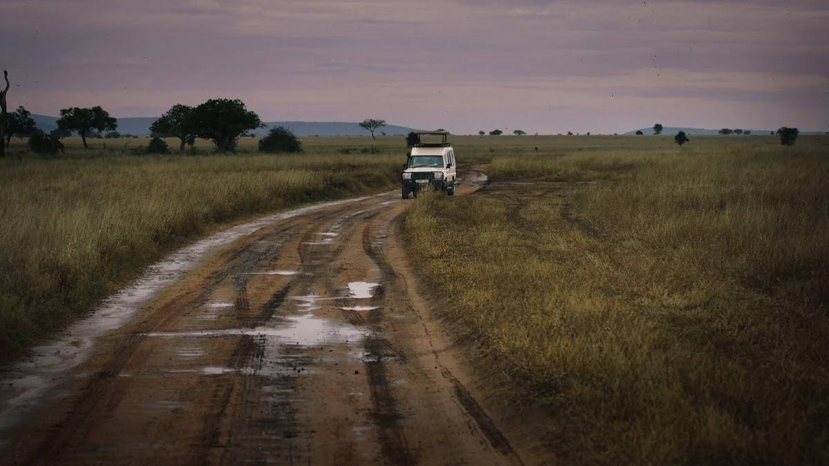 TanzaniaDSC03334.jpg
