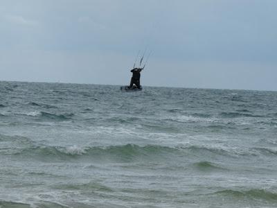 et pendant ce temps en Charente Maritime... - Page 11 P1110309