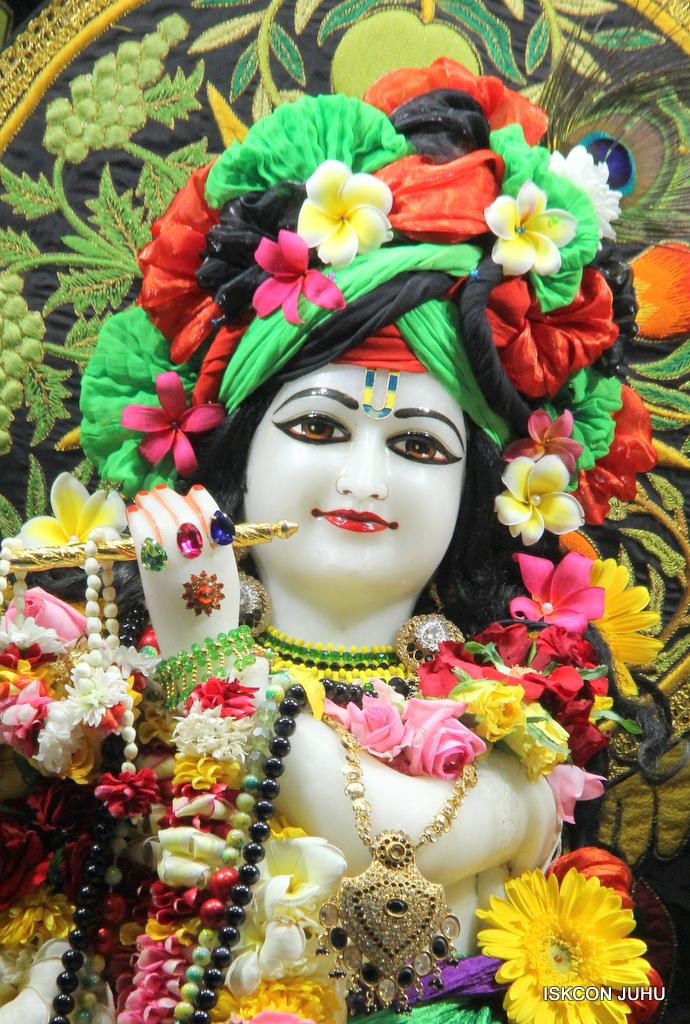 ISKCON Juhu Sringar Deity Darshan on 19th Nov 2016 (5)