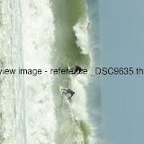 _DSC9635.thumb.jpg