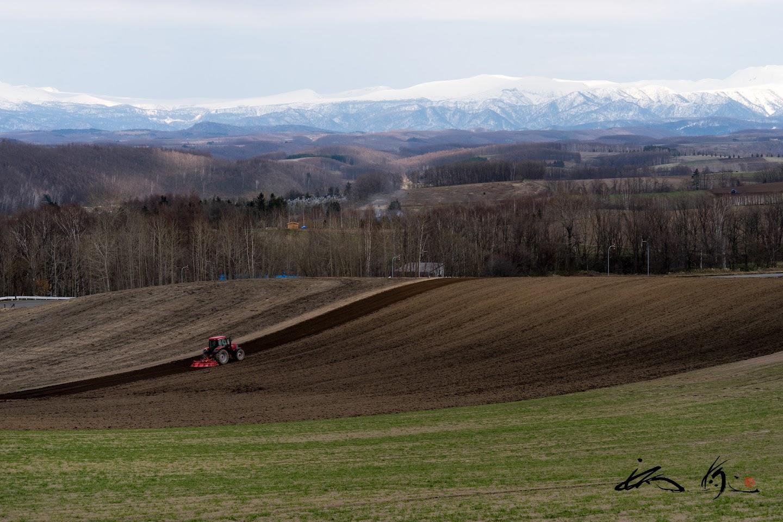 大地の生命躍動する滑らかな丘陵