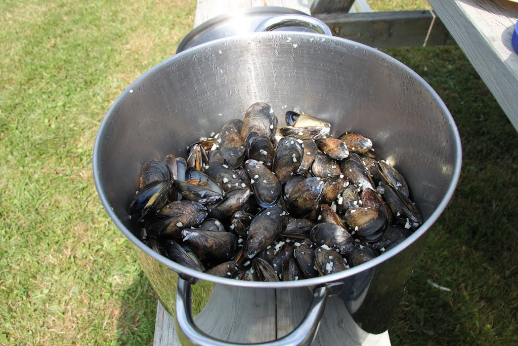 That's a lot of mussels.