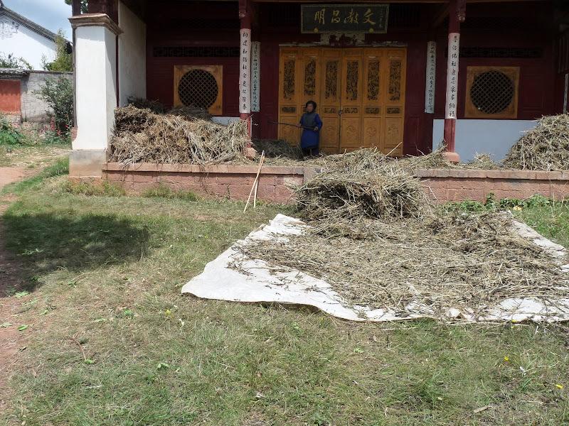 Chine . Yunnan.SHA XI 2 et retour à Lijiang - P1250122.JPG