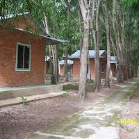 [DSTV-025] Thất xung quanh vườn Lâm tì ni - TVCN (cổng 2)