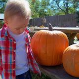 Pumpkin Patch - 115_8230.JPG