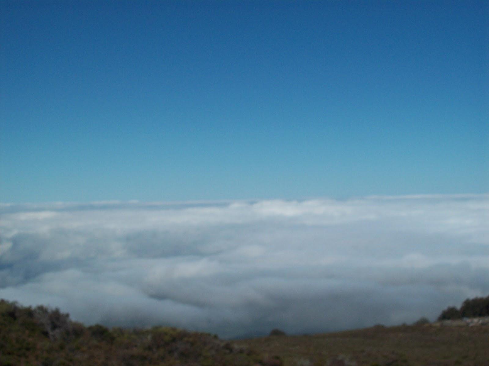 Hawaii Day 8 - 114_2045.JPG