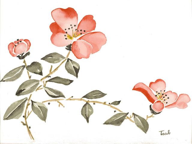Mes premières aquarelles, par Isabelle. - Page 2 Tableaux+ISA_0032