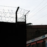 03_ Barbed-wire.jpg