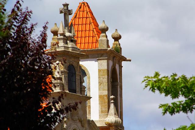 a planta que subiu à torre da igreja!