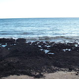 Hawaii Day 6 - 114_1808.JPG
