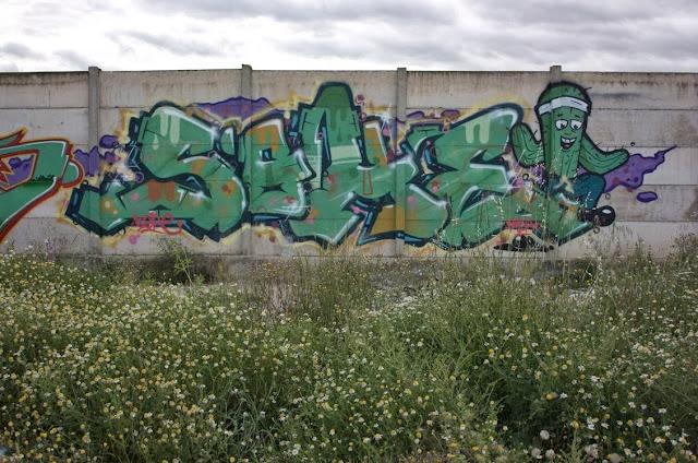 sohe (13)