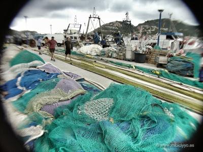 puerto pesquero port andratx puerto