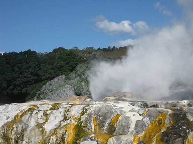 Prince of Wales Feathers and Pōhutu geysers erupting in Rotorua, New Zealand