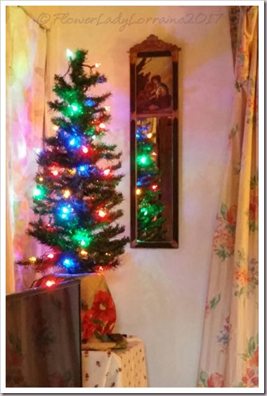 11-23-tree2