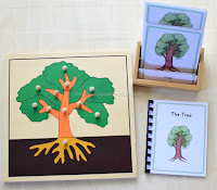 Montessori Botany Learning Materials