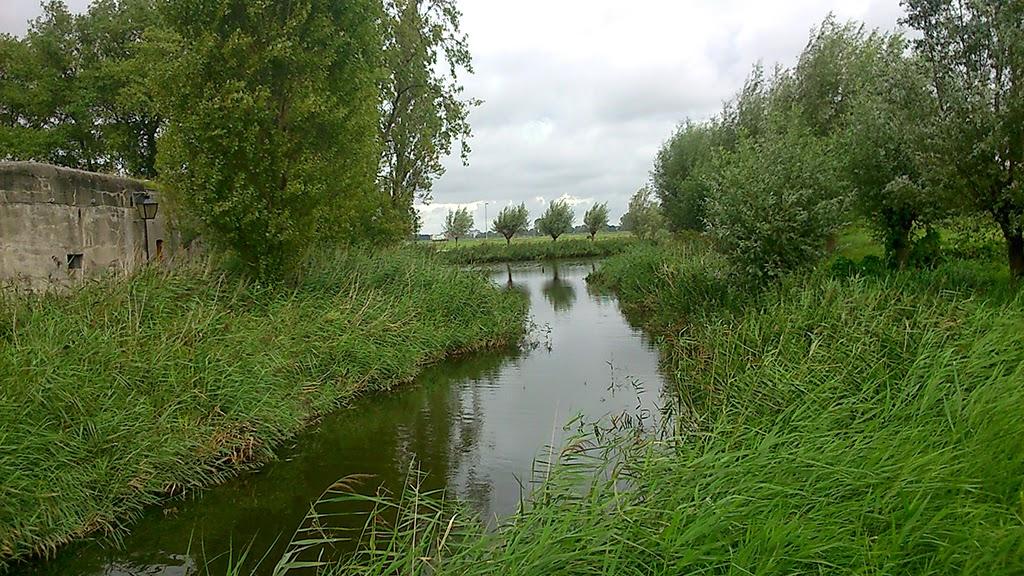 Haarlem 30 augustus 2014 - DSC_0762.JPG