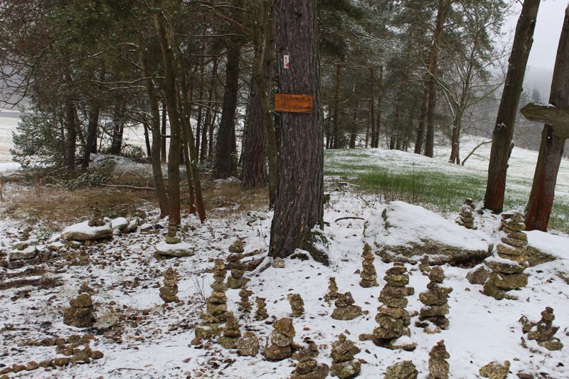 01. Januar 2016: Neujahrswanderung ins Waldnaabtal - IMG_1574.JPG
