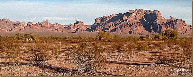 Palm Canyon in Kofa Mountain range