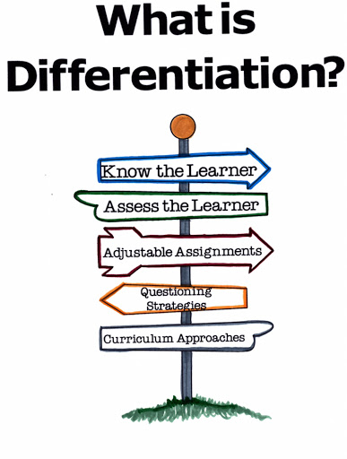 Differentiated Instructions Vs Standardized Tests My Journey Begins
