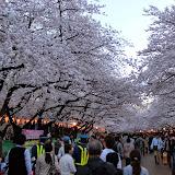 2014 Japan - Dag 1 - marjolein-IMG_0180-0108.JPG