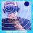 dizzyexplorer avatar image