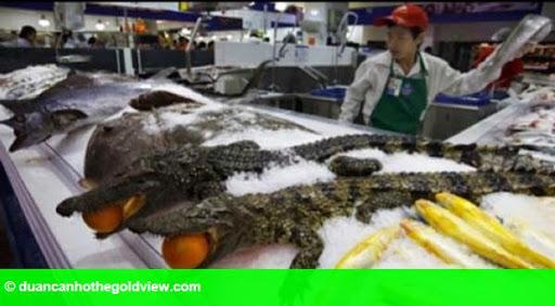 Hình 1: Hãi hùng cá sấu nguyên con, cá mập được bày bán trong siêu thị