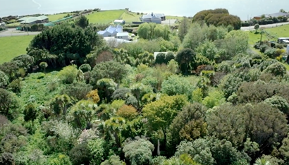 New-Zealand-food-forest.png.662x0_q70_crop-scale
