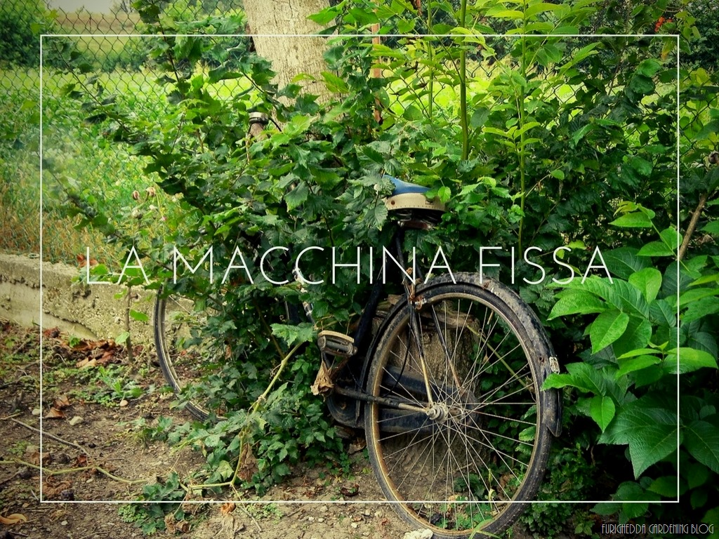 [La+Macchina+Fissa+12%5B5%5D]