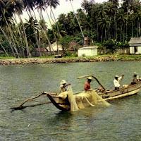 78 Sri Lanka galle fish.jpg