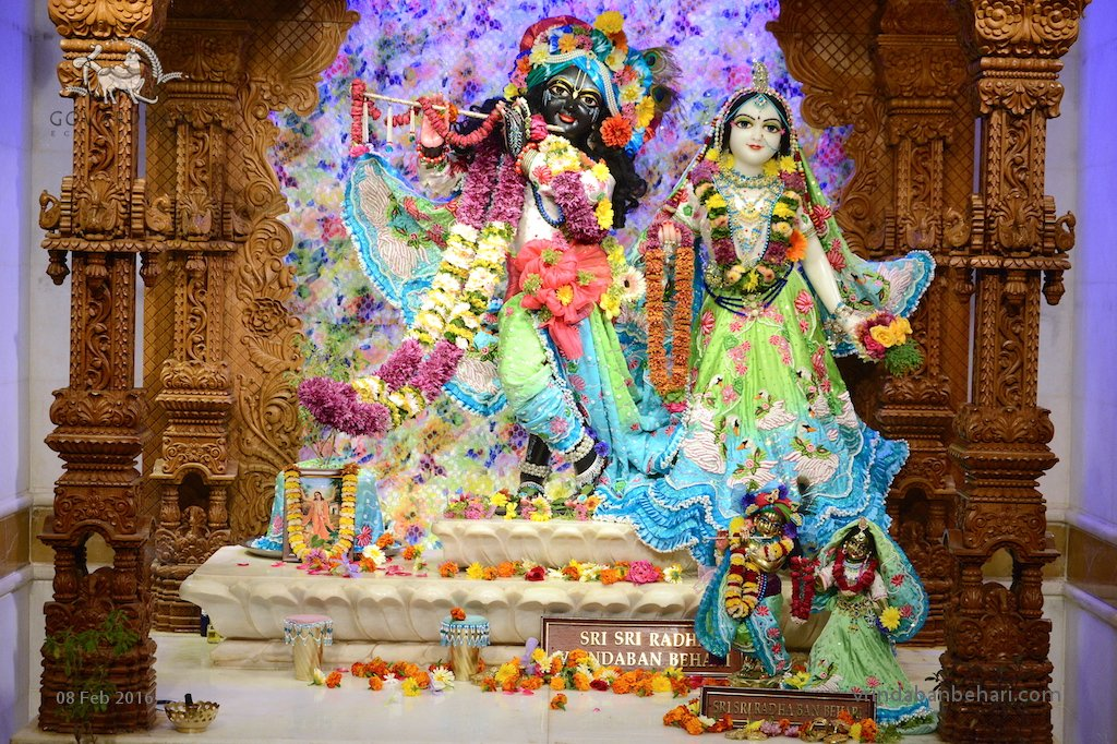 ISKCON GEV (Wada) Deity Darshan 08 Feb 2016 (6)